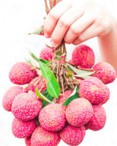 Lychee bunch for dogs