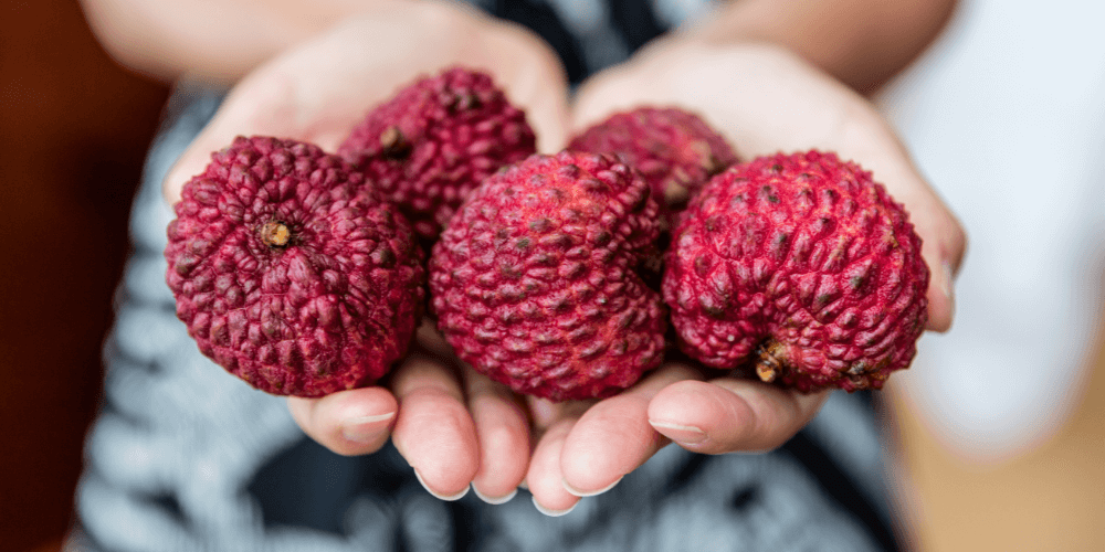 can dogs eat lychee with skin